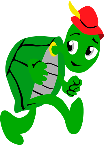 Pleinplakker schildpad staand