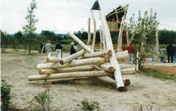 Houtstapel, robinia