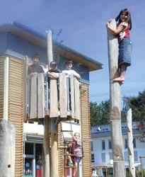 houten klimstam